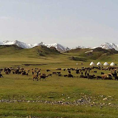 Central Asia Rally Song Kul Lake Kyrgyzstan